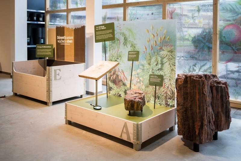 nexd | Gartenmuseum